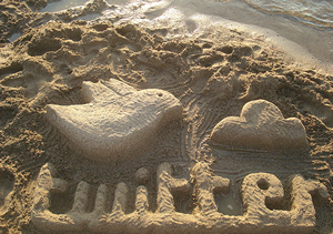 Twitter-Logo-in-the-Sand6352